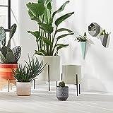 Urban Living Sapota Décor Table Top (vases, bookends)