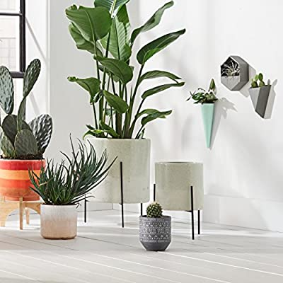 Urban Living Sapota Décor Table Top (vases, bookends)