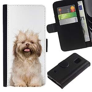 EuroCase - Samsung Galaxy S5 V SM-G900 - Norfolk terrier puppy glen of imaal dog - Cuero PU Delgado caso cubierta Shell Armor Funda Case Cover