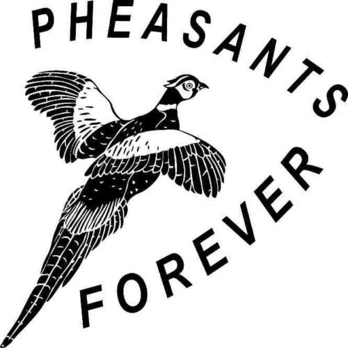 PHEASANTS FOREVER BIRD DESIGN CAR DECAL STICKER, Black, 12 In, Die Cut Vinyl Decal, For Windows, Cars, Trucks, Toolbox, Laptops, Macbook-virtually Any Hard Smooth Surface (Pheasant Design)