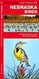 Nebraska Birds: A Folding Pocket Guide to Familiar Species (A Pocket Naturalist Guide)
