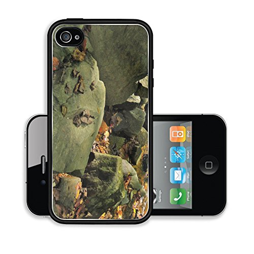 iPhone 4 4S Case Cabin John Park 1 Image 15264017510