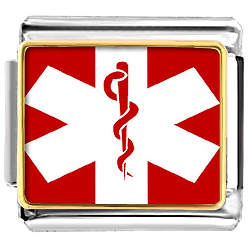 - LilyJewelry Medical Alert Sign Photo Italian Charms