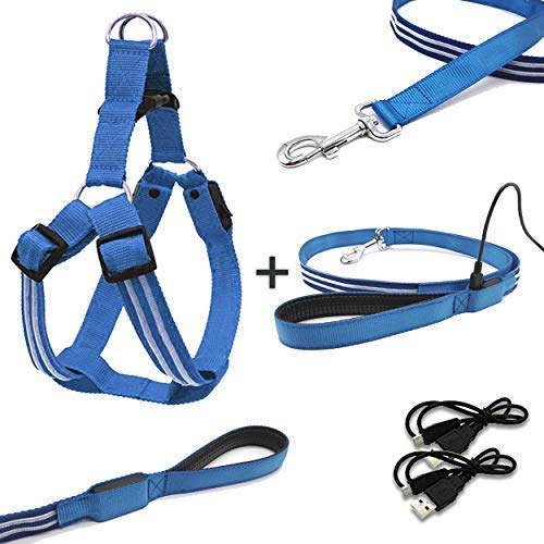 Wild Tiger Collection Safety LED Dog Leash +Plus Harness | Bundle | Rechargeable Batteries | No-Pull Pet | Adjustable, Water Resistant | for Small, Medium, Large Dogs. Safe & Seen - Blue (Large)