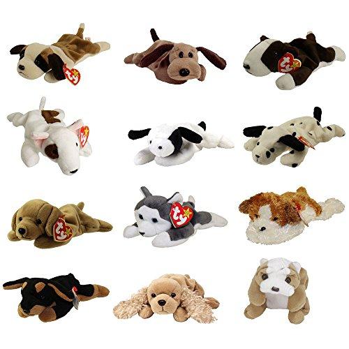 TY Beanie Babies - DOGS #1 (Set of 12)(Bernie, Bones, Fetch, Nanook, Spot, Spunky +6)(7.5-9 inch) (Beanie Baby Dog Set)