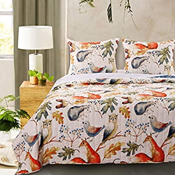 Amazon Com Barefoot Bungalow Willow Quilt Bedding