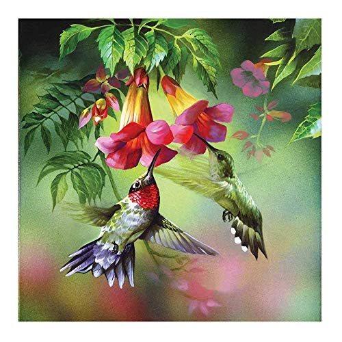 Clearance Arts Rakkiss 5D Morning Glory Hummingbird Lovely Embroidery Square Diamond Drawing Round Drill Home Decor Gift 3030CM