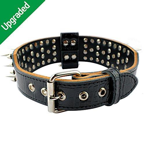 Leather stylish dog collars