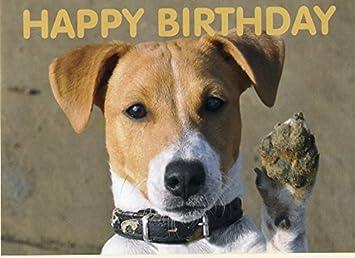 Happy birthday jack russell muddy paw blank birthday card happy birthday jack russell muddy paw blank birthday card bookmarktalkfo Image collections