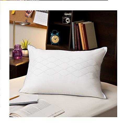 Sealy Posturepedic LiquiLoft Support Pillow