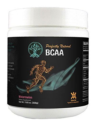 Perfectly Natural Performance BCAA (Intek Snow)
