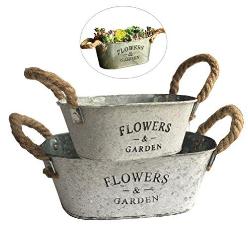 Vtete 2 Pcs Rustic Succulent Planter Box Iron Flower Pot Plant Container Box for 2 Different (Iron Flower Pot)