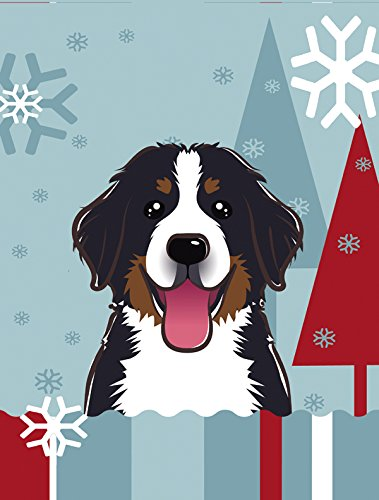 Cheap Caroline's Treasures BB1733CHF Winter Holiday Bernese Mountain Dog Canvas House Size Flag, Multicolor, Large