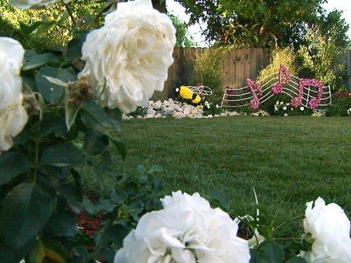 Rose Parade (Backyard Crashers)