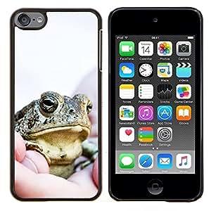 TECHCASE---Cubierta de la caja de protección para la piel dura ** Apple iPod Touch 6 6th Touch6 ** --Feliz grandes frescos de la rana