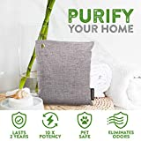Bamboo Charcoal Air Purifying Bag for Big Rooms