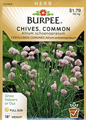 Burpee 56788 Herb Chives, Common Seed Packet