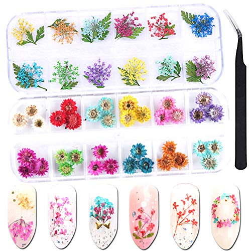 3D Dried Flowers Nail Art Stickers Decals Accessories 48 Natural Real Dry Flowers DIY Nail Decorations Design Nail Salon Manicure Acrylic Fake Nail Tips Art Supplies