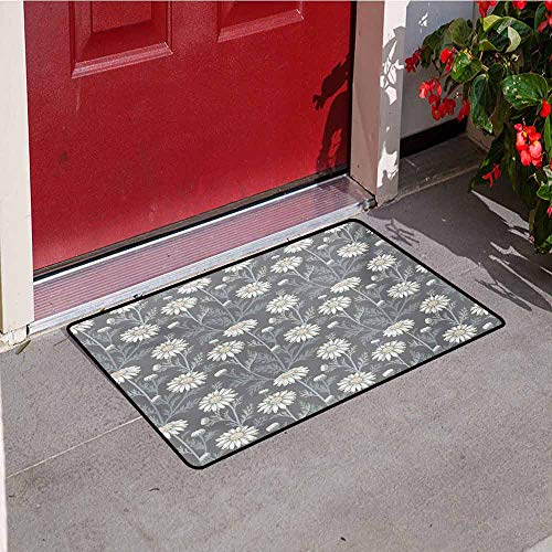 Jinguizi Floral Inlet Outdoor Door mat Cottage Daisy Petals Field Summer Gardening Theme Chamomile Flourish Catch dust Snow and mud W29.5 x L39.4 Inch Grey Coconut Sage Green
