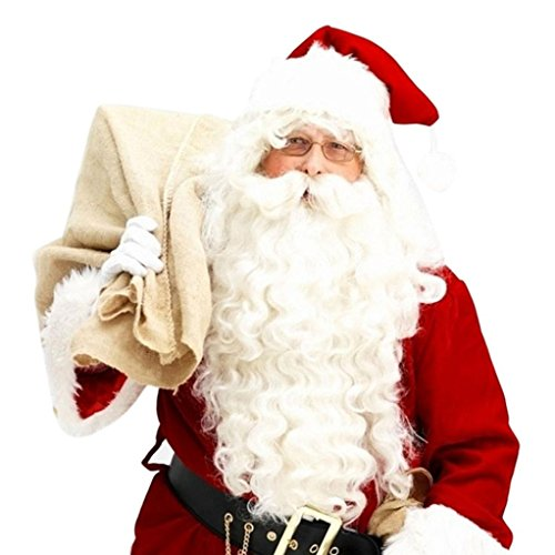Leoy88 Professional Costumes Accessory Adult's Quality Santa Claus Beard and Wig Set (Moses Wig And Beard Adult Costumes Set)