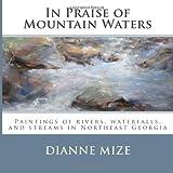 In Praise of Mountain Waters, Dianne Mize, 1468000470