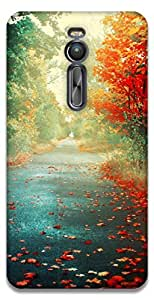 The Racoon Grip printed designer hard back mobile phone case cover for Asus Zenfone 2 ZE551ML. (road to pa)