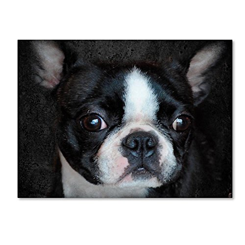 Trademark Fine Art Boston Terrier Portrait by Jai Johnson, 14x19-Inch Canvas Wall Art