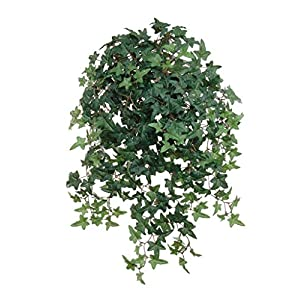 "Hanford-design Larksilk 26.5"" Artificial English Ivy Plant - Small Artificial Plants with Silk Greenery Faux Ivy Vines - Artificial Ivy Plant with 450 Fake Ivy Leaves 78"