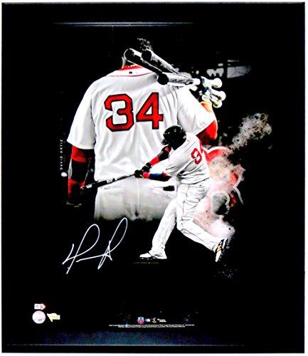 David Ortiz Signed Red Sox 20x24 Photo - FANATICS & MLB COA Authenticated - Professionally Framed