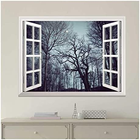 Wall Mural, Removable Sticker, Home Decor (36