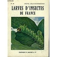 Atlas des larves d'insectes de France : Vers blancs, chenilles, asticots