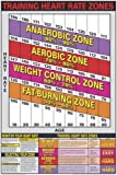 """Heart Rate Zones 24"""" X 36"""" Laminated Chart"""