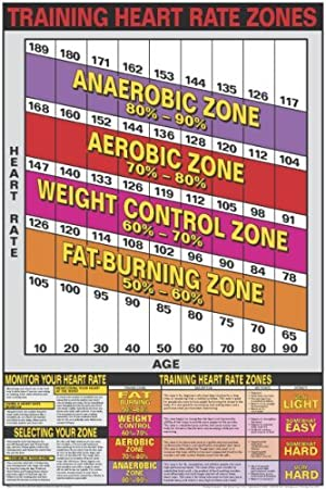 Heart Rate Zones 24 X 36 Laminated Chart Misc Amazon Tools