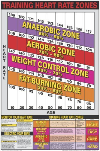 AmazonCom  Heart Rate Zones  X  Laminated Chart  Fitness