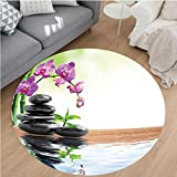 Nalahome Modern Flannel Microfiber Non-Slip Machine Washable Round Area Rug-ng Water and Health Giving Properties Asian Eastern Way of Getting Better Art Photo Multi area rugs Home Decor-Round 79''