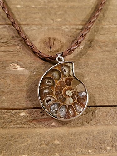 (Fossil Ammonite Pendant Leather Necklace Primitive Ocean Shell Jewelry Hippie Boho Handmade (N84))