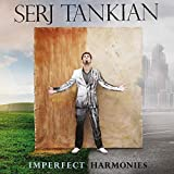 Imperfect Harmonies (180G/Transparent Marbled Vinyl)