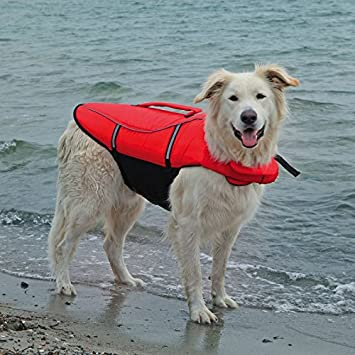 wangado Chaleco Flotador para perros tamaño L MAX 36 KG de paseo para utilizar en barco
