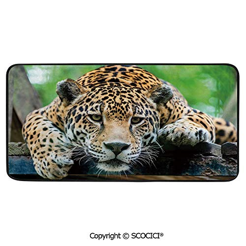 - Rectangle Rugs for Bedside Fall Safety, Picnic, Art Project, Play Time, Crafts, Large Protective Mat, Thick Carpet,Jungle,South American Jaguar Wild Animal Carnivore Endangered Feline,39