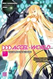 Accel World, Vol. 15 (light novel): The End and the Beginning