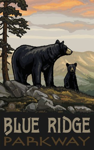 Northwest Art Mall Blue Ridge Parkway Black Bear Family North Carolina Wall Art by Paul A Lanquist, 11 by - Parkway Mall
