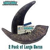 2 Pack of Buffalo Hornz Large Long Lasting 100% Natural Water Buffalo Horn Dog Chews