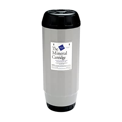 Nature2 In Ground Mineral Cartridge Replacement G35 : Swimming Pool Cartridge Filters : Garden & Outdoor