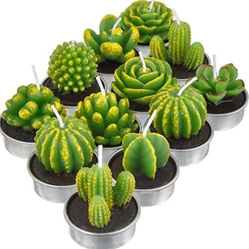 TecUnite 12 Pieces Cactus Tealight Candles Handmade Delicate Succulent Cactus Candles for Party Wedding Spa Home Decoration Gifts (Style A)