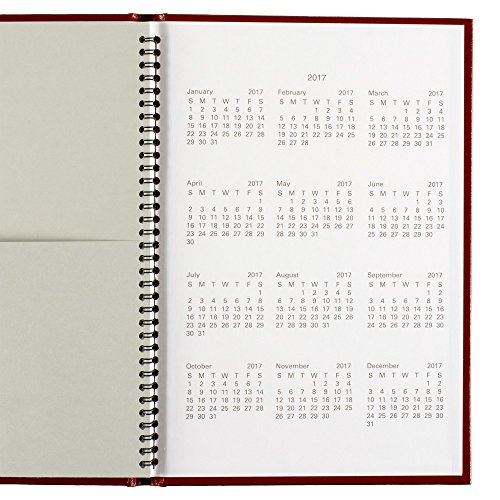 DayMinder Monthly Planner 2016, Premiere, 7.88 x 11.88 Inches, Assorted Colors - Color May Vary (G470H-10) Photo #8