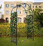 """1. GO Steel Garden Arch, 6'9"""" High x"""