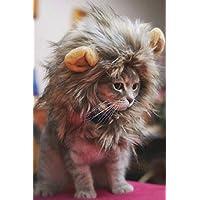 Kicode Disfraz de mascota peludo Lion Mane peluca