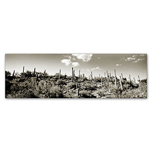 "picture of Trademark Fine Art Desert by Preston Hanging Art Piece, 10""x32"""