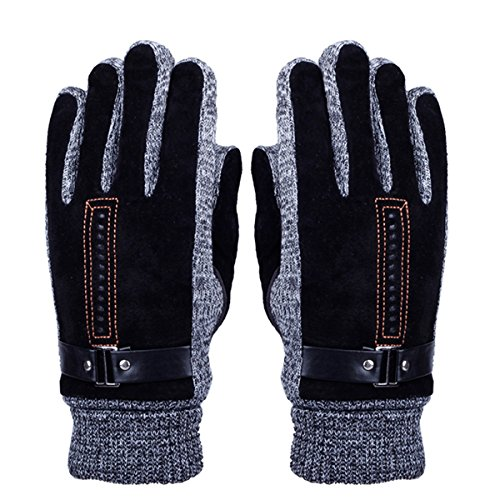 Men's Winter Leather Gloves - WITERY Thick Warm Fleece Windproof Gloves Cold Proof Thermal Mittens - Ideal for Dress, Driving, Cycling, Motorcycle, Camping etc Black (Thermal Fleece Mittens compare prices)