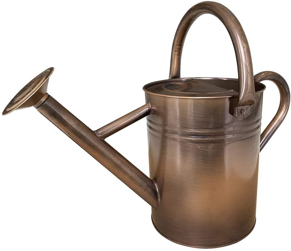 SunnyTong Galvanized Steel Watering Can Metal Watering Can for Outdoor Plants with Copper Accents, 1 Gallon, Copper